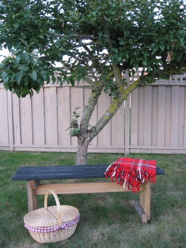 Country Style Picnic Bench